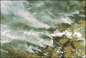 smoke plumes from satellite
