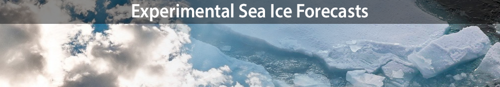 Experimental Sea Ice Forecasts