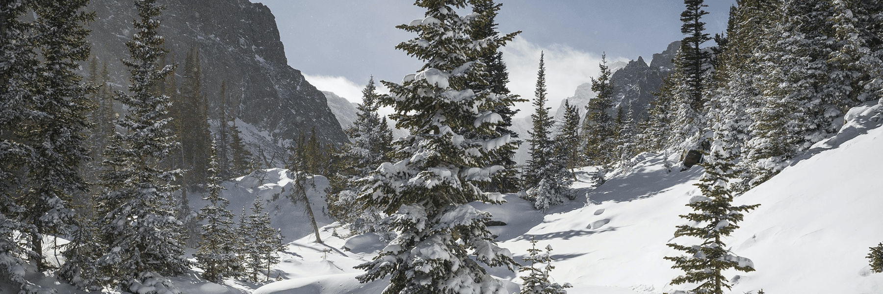 Snowy scene at Glacier National Park, by Andrew Gloor on Unsplash.com